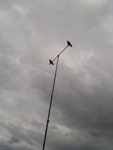 The Popinjay mast